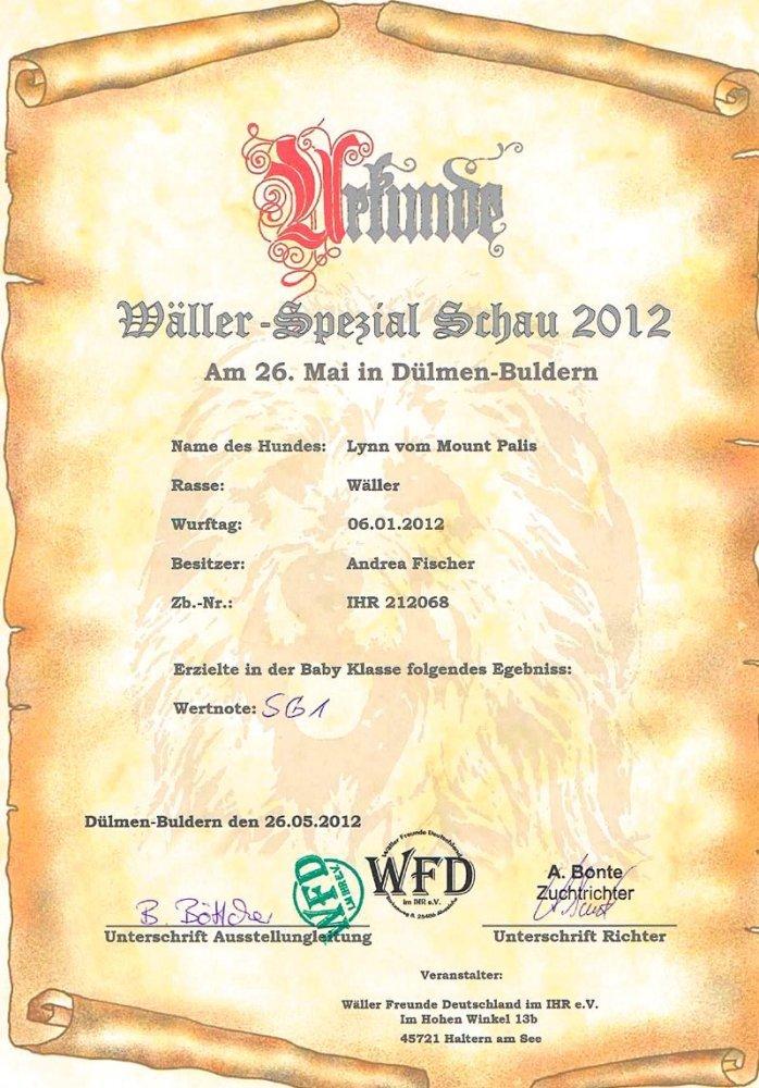Wäller-Spezial Schau 2012