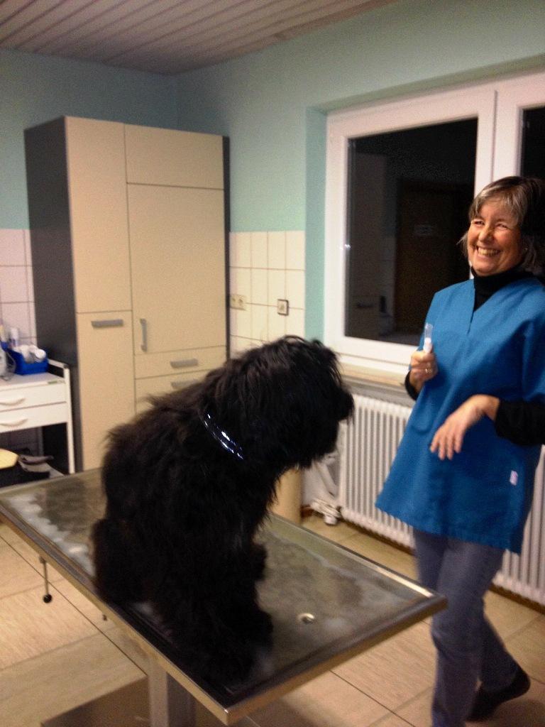 Lynn beim Tierarzt